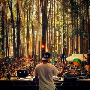Electric Forest 2014 2
