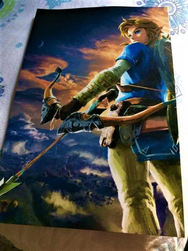 Breath of Wild Poster
