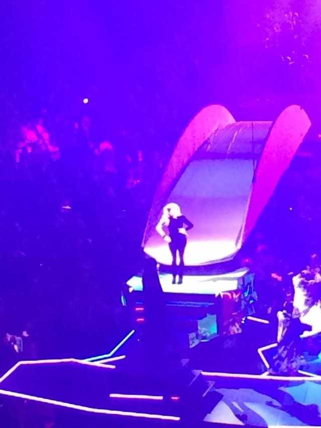 Lady Gaga Concert 5
